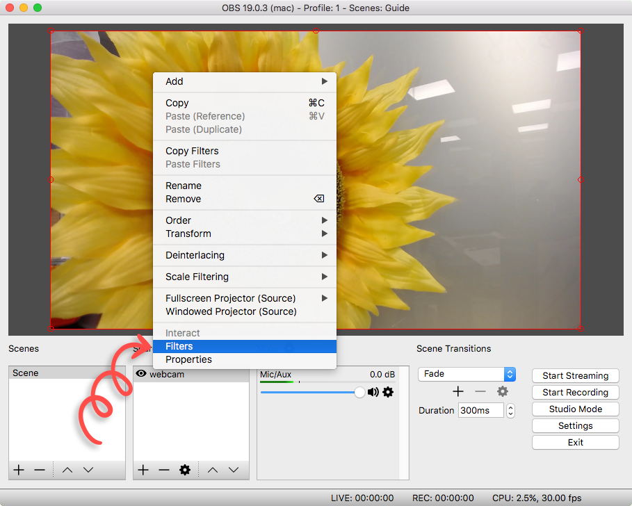 Cropping a Layer in OBS (Open Broadcaster Software)